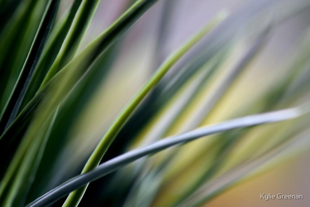 Shades of Green by Kylie Greenan
