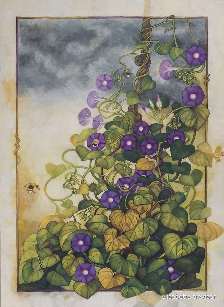 Ipomoea morning glory - Botanicals theme by elisabetta trevisan