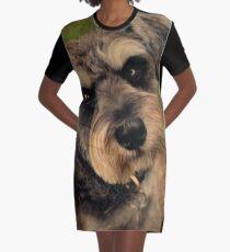 Colin Graphic T-Shirt Dress