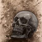 Skull by Inese