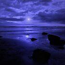 THAT BLUE BLUE FEELING by leonie7