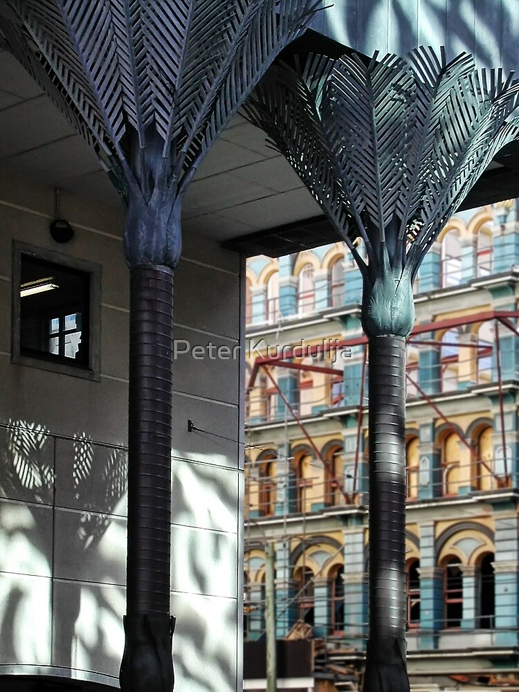 Dancing Shadows of the Central Library by Peter Kurdulija