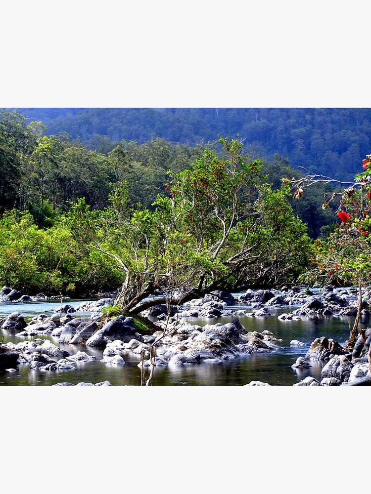 Nymboida River by theoddshot