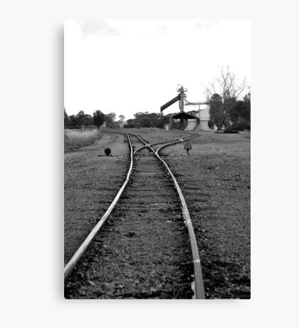 to the siding Canvas Print