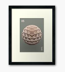 05 Framed Print