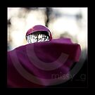 Water Drop On Rose by missyg