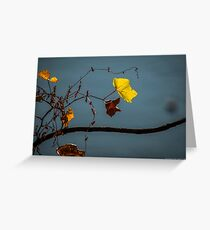 Autumn Leaves - Hudson River | New Jersey Greeting Card