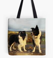 Friends forever. Tote Bag