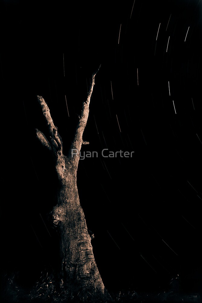 Star Trails by Ryan Carter