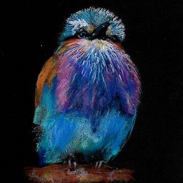 Lilac-Breasted Roller by Mollie-Taylor