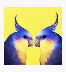 Winnie Bird Photographic Print
