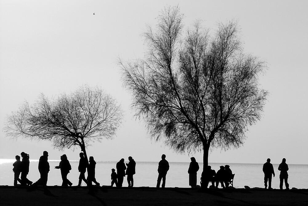Walking besides the sea by emreucar