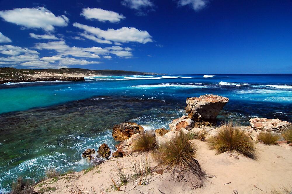 Hanson Bay by Wayne England