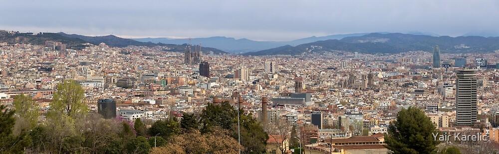 Panoramic View of Barcelona by Yair Karelic