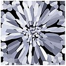 Confetti Flower in Black & White by Valerie  Fuqua