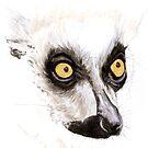 Portrait of a Ringtail Lemur by Joel Borgerson