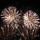 Floral fireworks by Maureen Brittain