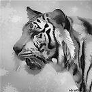 Gespenstischer Tiger von Marlene Watson