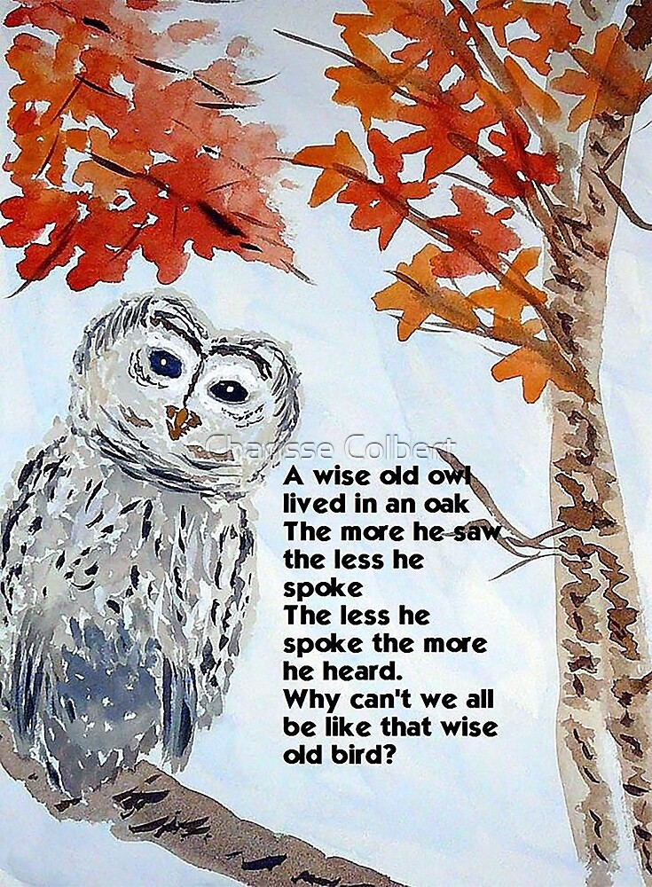 Wise Owl by Charisse Colbert