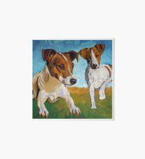 Jack Russell Terrier  Art Board
