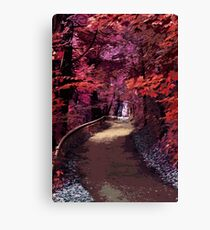 Into the forest of Dreams Canvas Print
