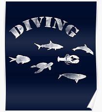 Fishes, Diving. Sea Life. / Fische, Fischschwarm. Tauchen Poster