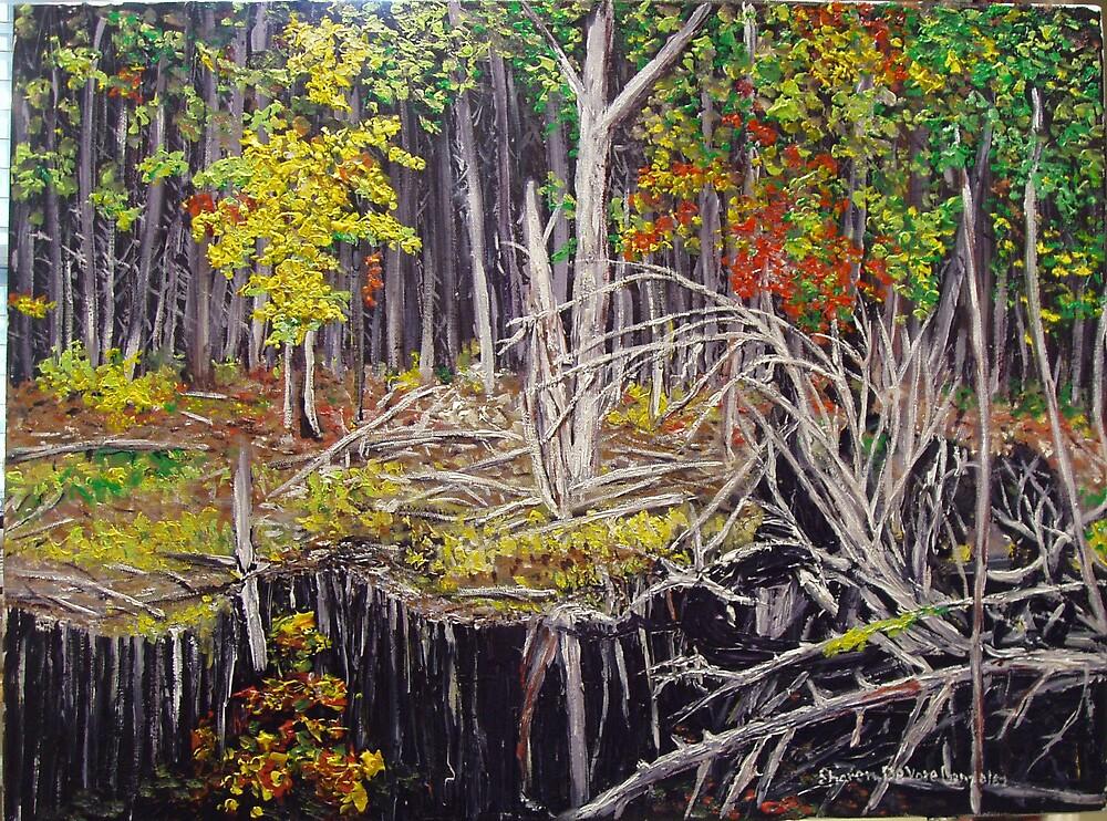 Beaver Pond by SharonGonzalez
