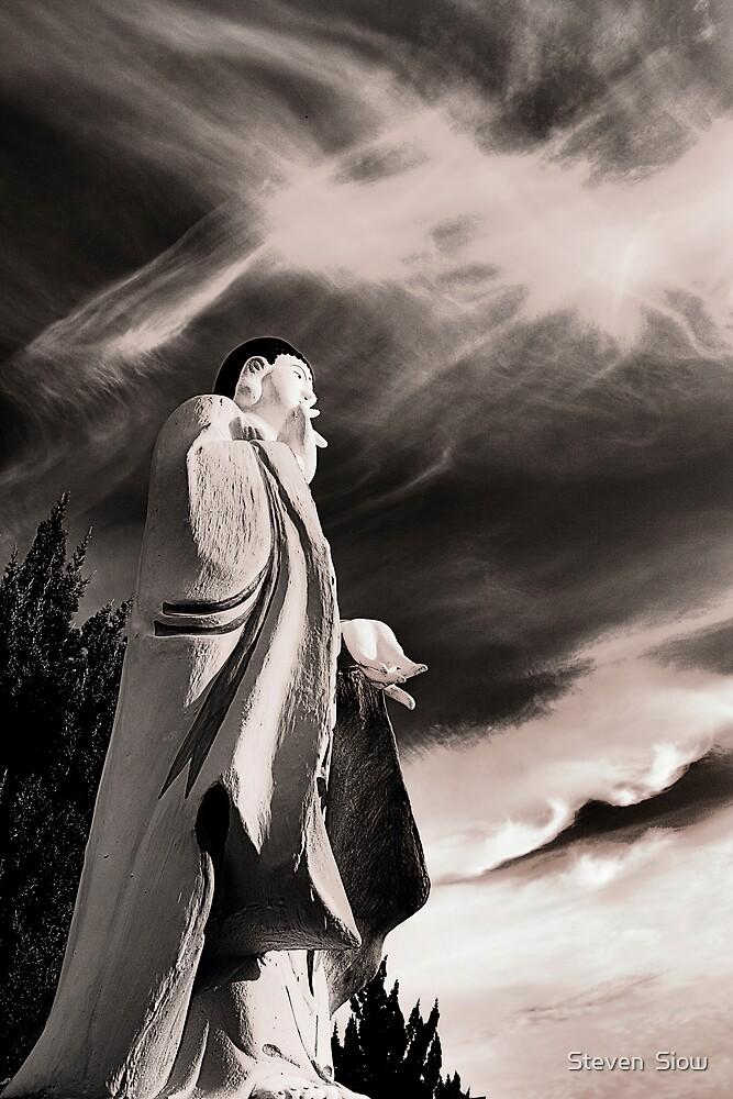 The Venerable Buddha Amitabha by Steven  Siow