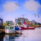Seagulls of Peggys Cove by kenmo
