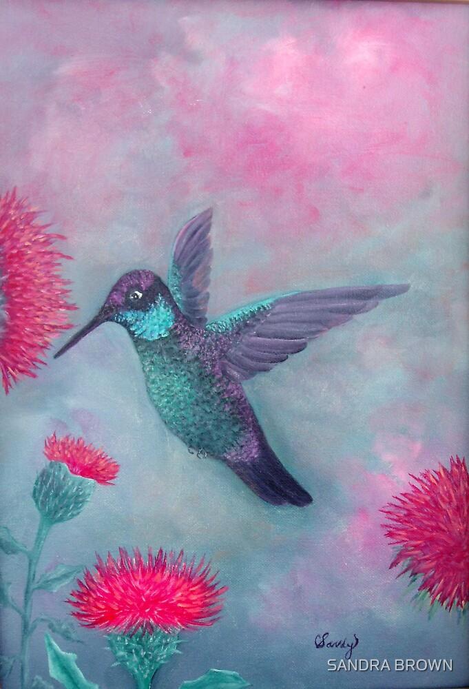 MAJESTIC HUMMINGBIRD  ORIGINAL OIL by SANDRA BROWN