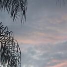 Tropical Sunset by Schock100
