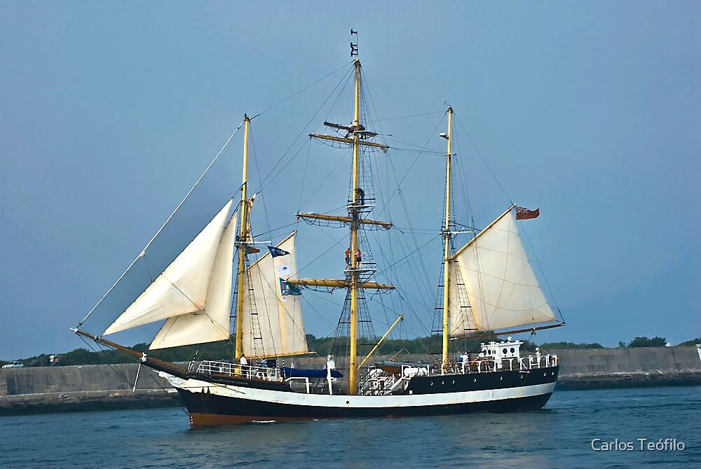 PELICAN of LONDON (Vessels visit Portugal serie) 2 by Carlos Teófilo