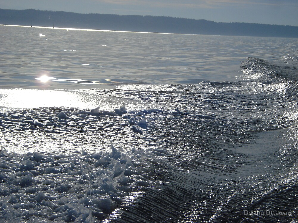 sunlight and waves by Dorthy Ottaway