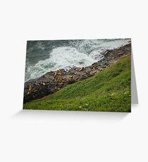 Oregon Coast Sea Lions Greeting Card