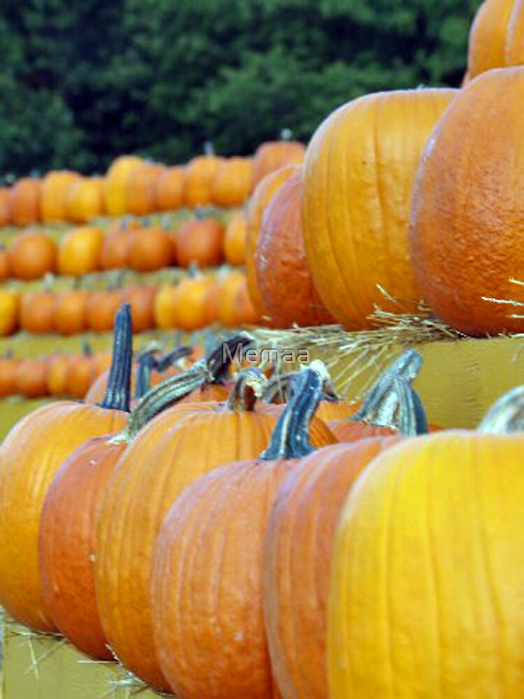 Who's Gonna Eat All These Pumpkins? by Memaa