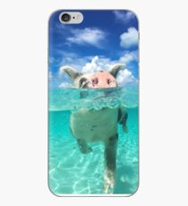 Cute Swimming Pigs in Bahamas iPhone Case