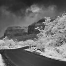 Tamhini Ghat Road #2 by irworld