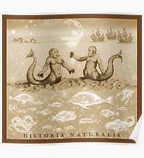 Natural History in Sepia | CreateArtHistory Poster