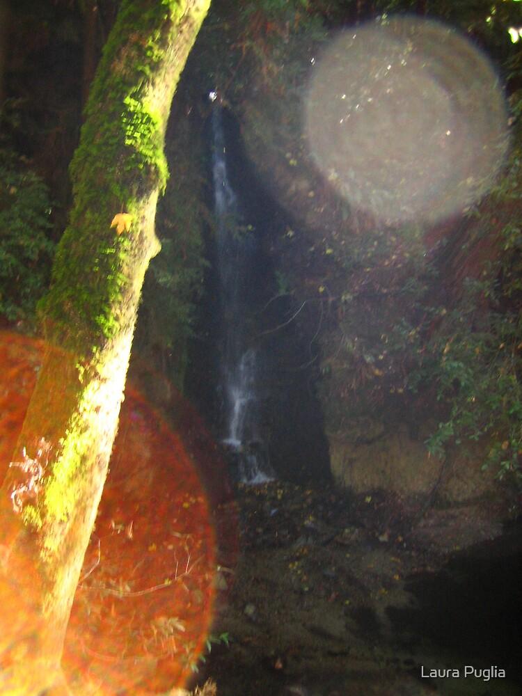 Sunbeams and Waterfalls by Laura Puglia