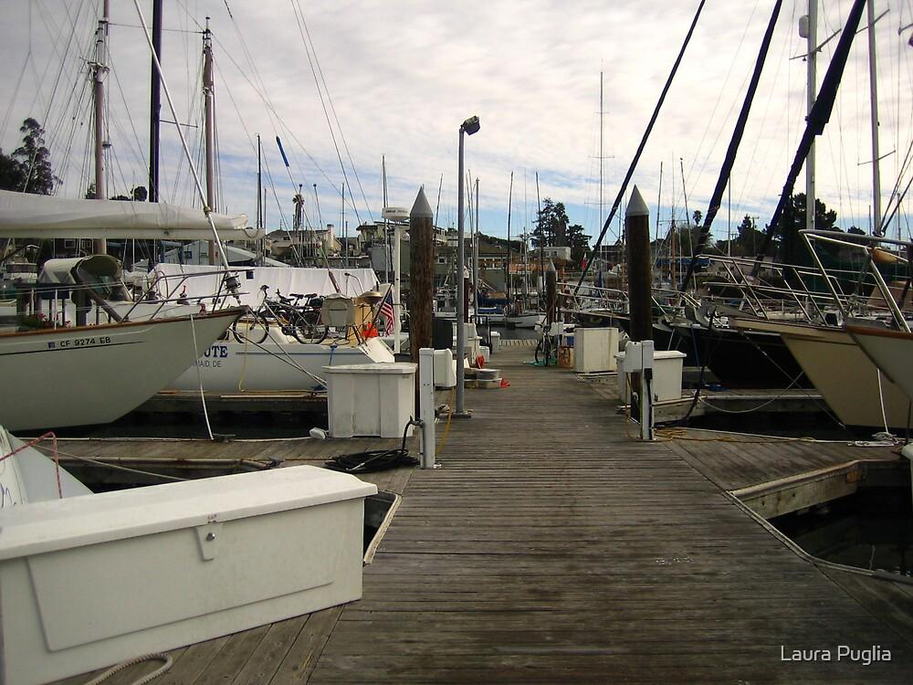 Boat Docks by Laura Puglia
