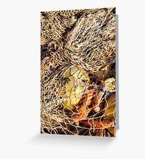 Fishing net... Greeting Card