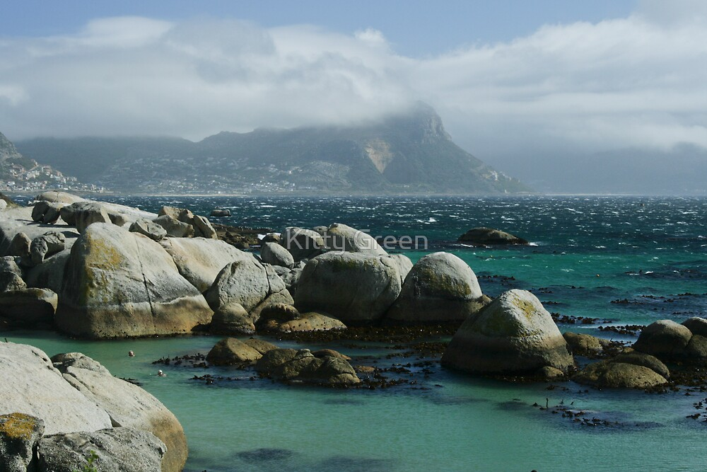 Boulders Beach - Cape Town by JustineEB