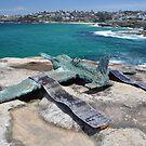 Sculptures By The Sea,Bondi,NSW 2017-Aeroplane by muz2142