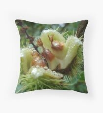 Sweet chestnuts Throw Pillow