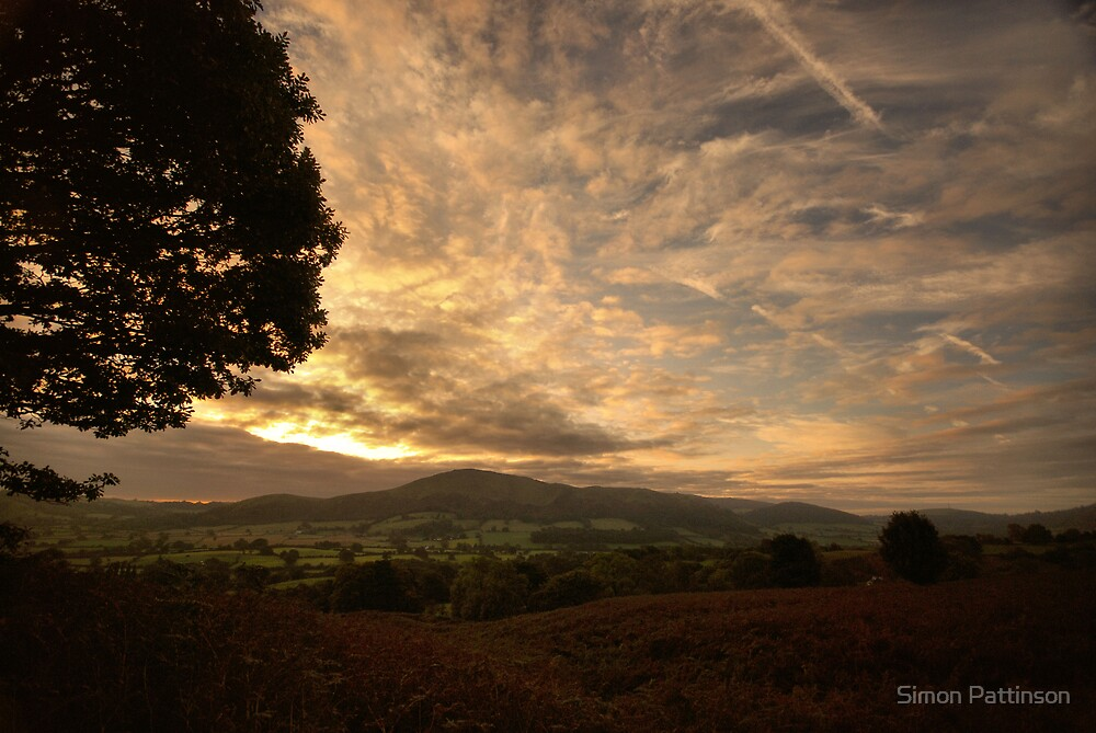 Morning Light by Simon Pattinson