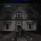 Hotel Noir by Peter Krause