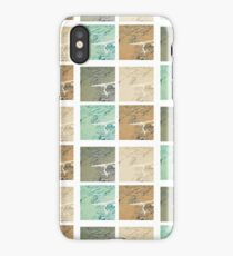 Summer day fly  iPhone Case