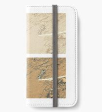 Summer day fly  iPhone Wallet/Case/Skin