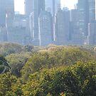 Central Park, Central Park South Skyline, New York City by lenspiro