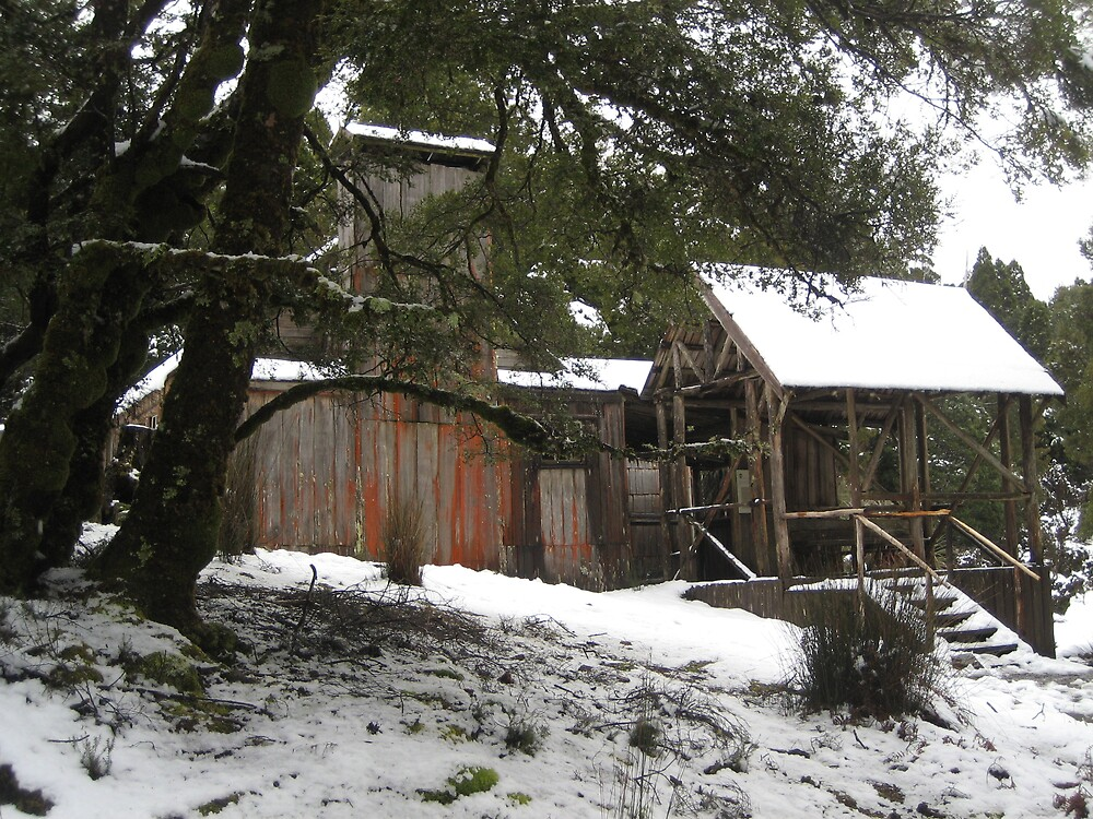 Hut in Tasmania by Lidia Sweeney
